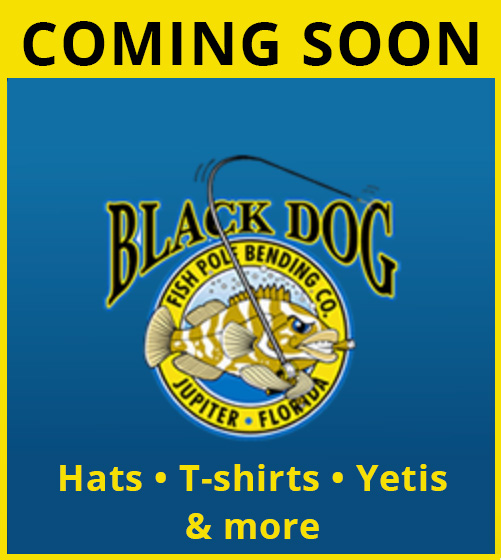 Store Coming Soon